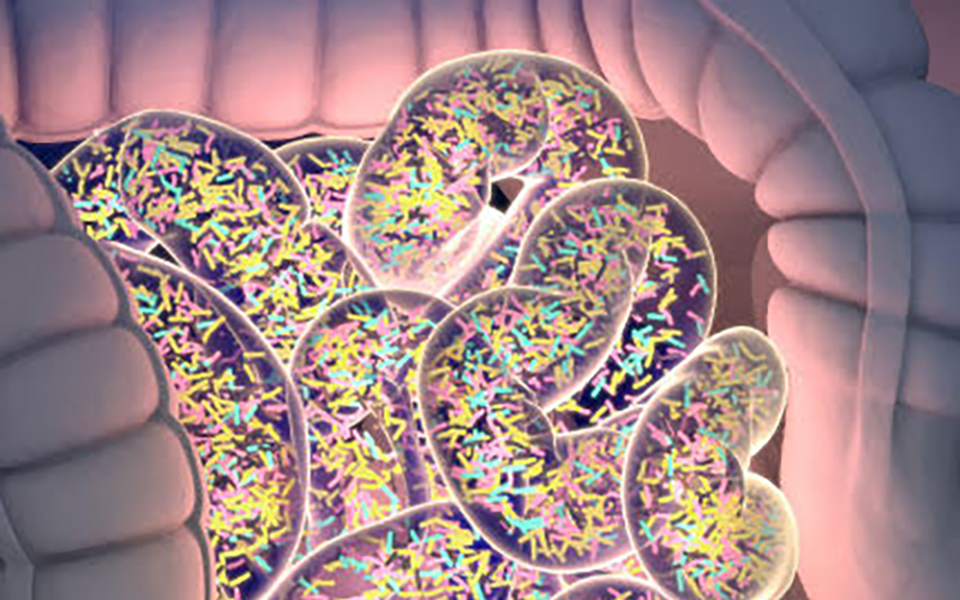 Feature_Microbiome
